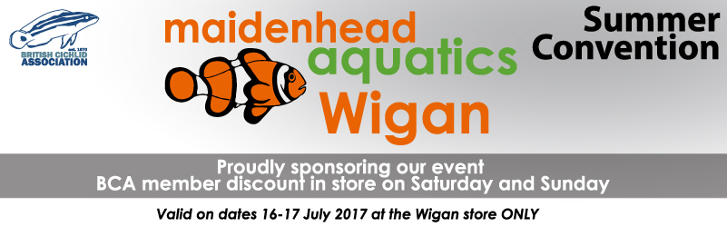 Maidenhead Aquatics are sponsoring our Summer convention